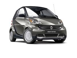 smart-model-year-2013-9